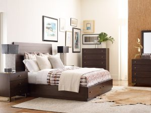 Rachel Ray austin bedroom